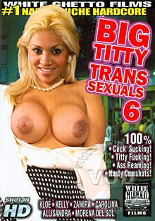 Big Titty Transsexuals 6 Box Cover