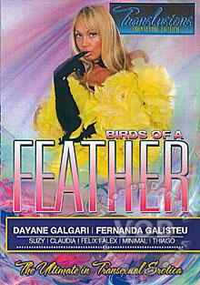 Birds Of A Feather Box Cover