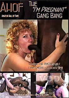 Amateur Hall Of Fame Volume 17 - The I'm Pregnant Gang Bang Box Cover