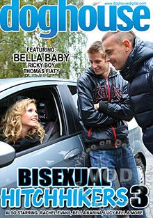 Bisexual Hitchhikers 3