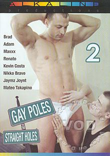 Gay Poles For Straight Holes 2 Box Cover