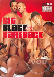 Big Black & Bareback