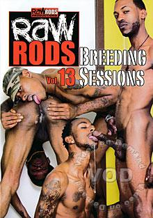 Raw Rods 13 - Breeding Sessions Box Cover