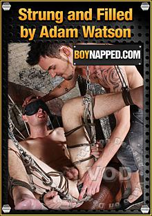 Strung And Filled By Adam Watson