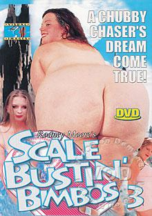 Scale Bustin' Bimbos 3 Box Cover