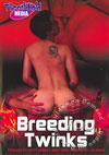 Video: Breeding Twinks